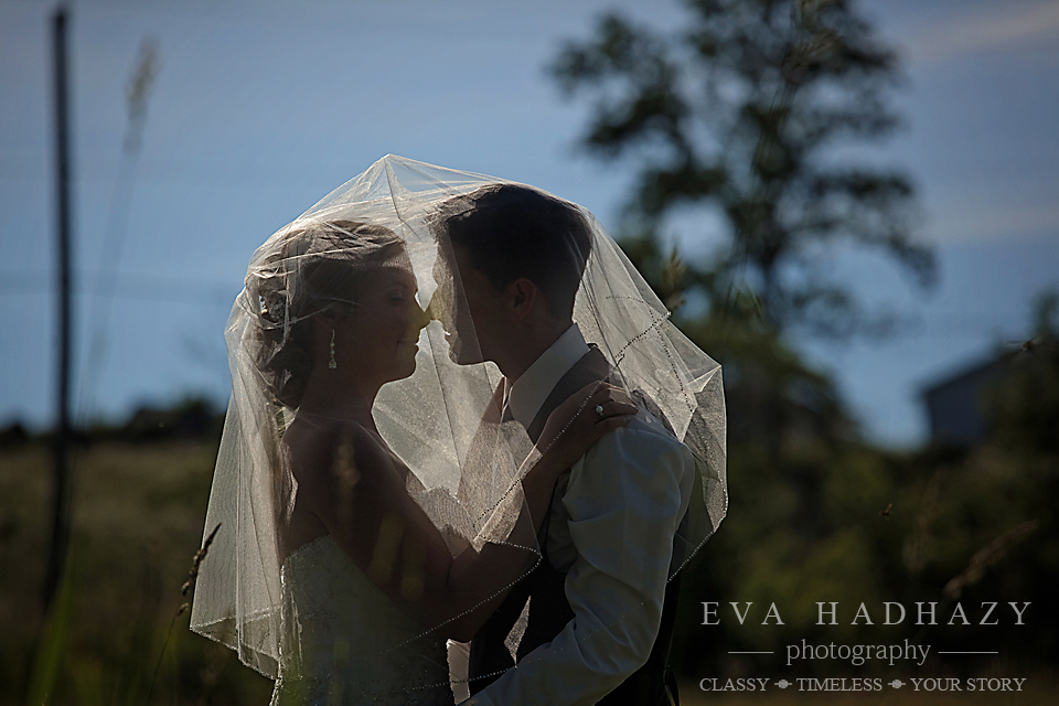 www.evahadhazy.com